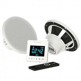 Комплект акустической системы SteamTec TOLO Music system (2 влагостойкие колонки, сенсорный пульт Bluetooth/USB/SD, IP67, работает автономно)